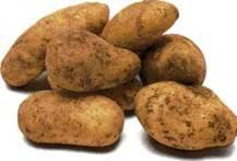 Хлеб с картофелем, луком и тмьяном