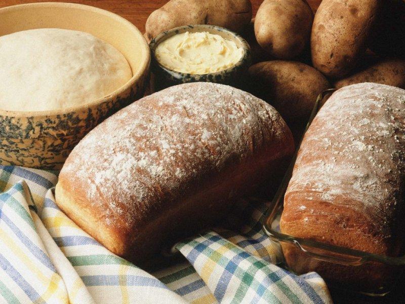 Картофельная болезнь хлеба
