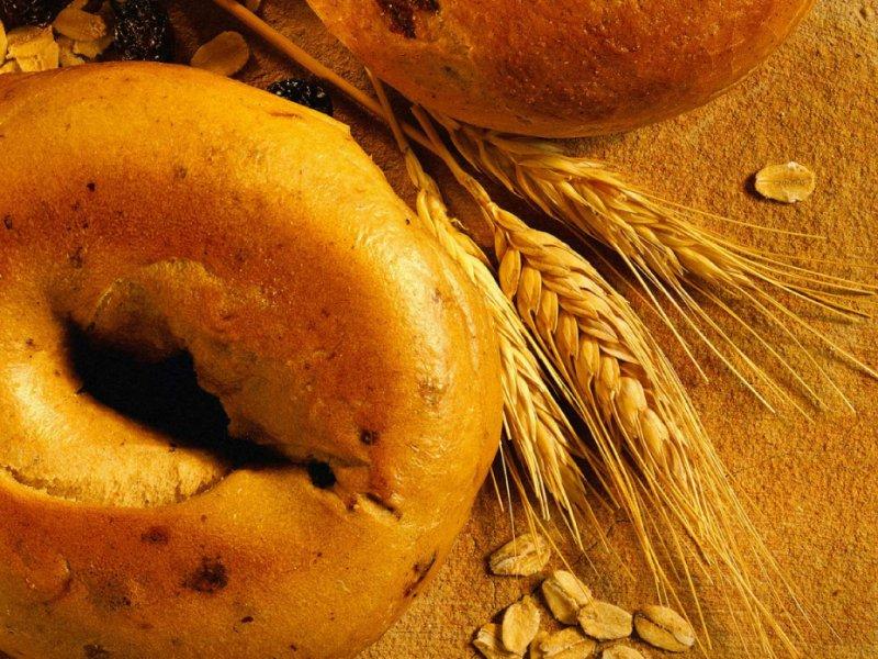 Зерновые культуры: Овес и кукуруза